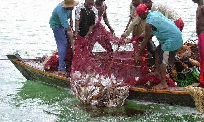 Government places a ban on Fishing activities