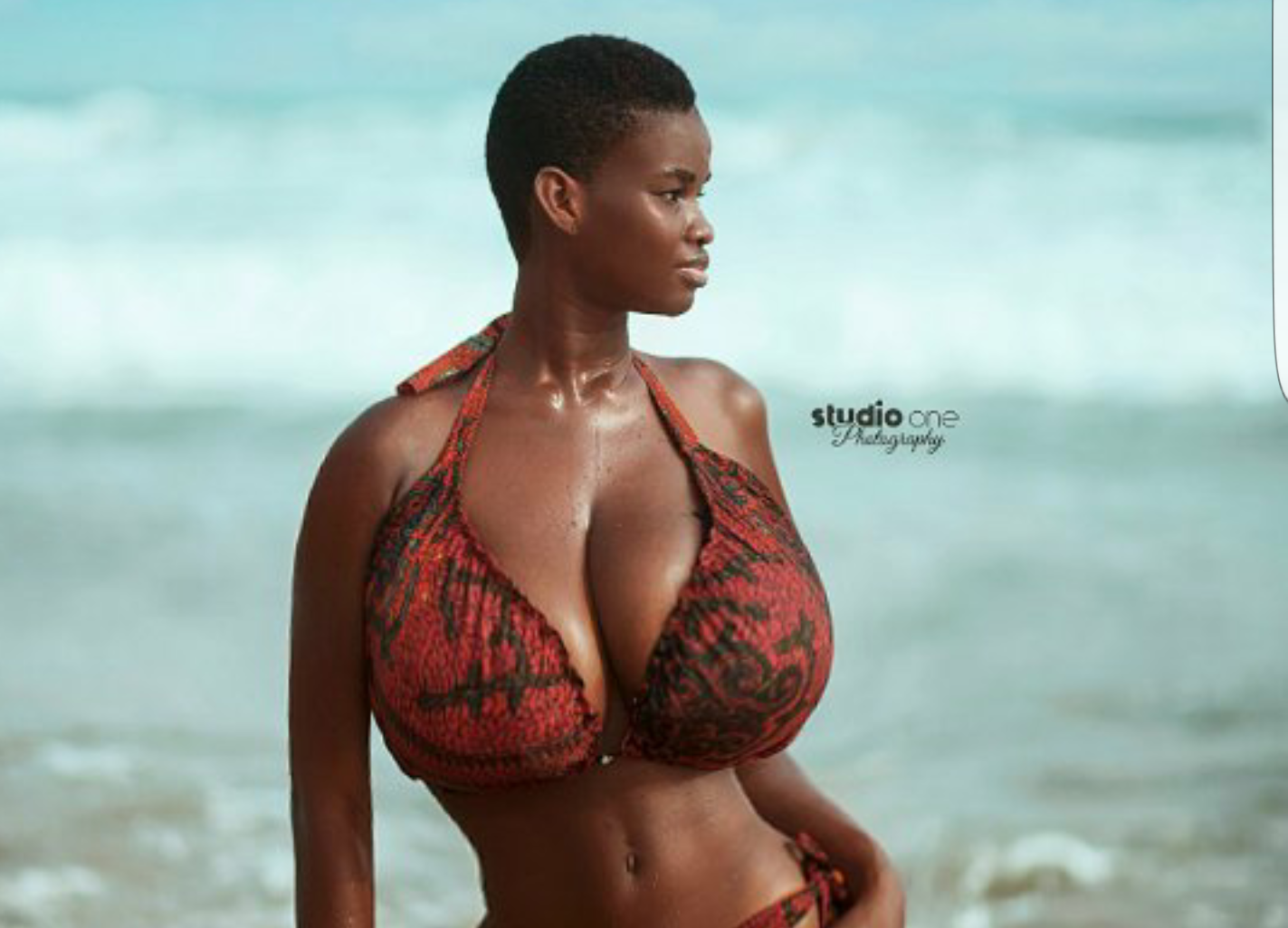 Pamela Odame, who is this lady taking Ghana's Internet by storm?