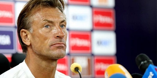 AFCON 2019: Herve Renard apologises for Benin defeat