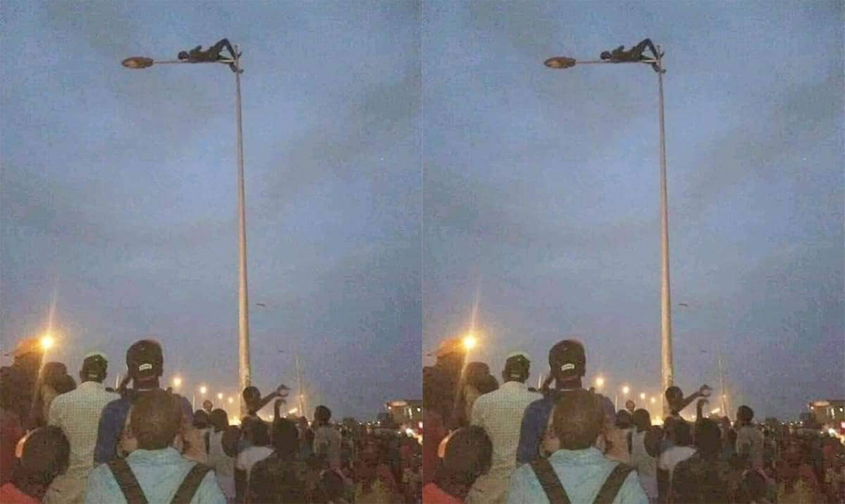 Robber climbs on top of a street light to avoid beatings