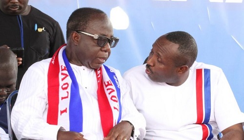 NPP to elect executives for new regions