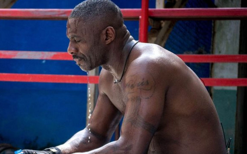 Fighting fit: In 2016 Idris did a year's training as a kickboxer for a documentary [Image: Discovery Communications]